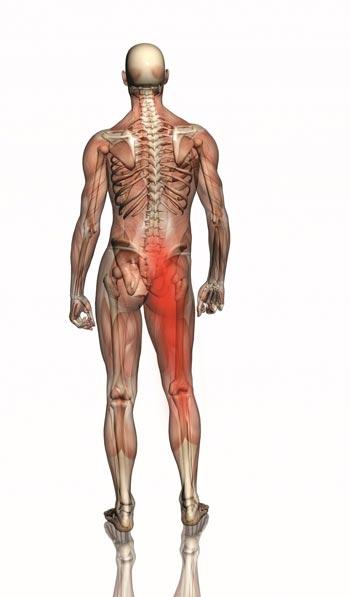 Hernie discale sciatique et ostéopathie à Breuillet 91